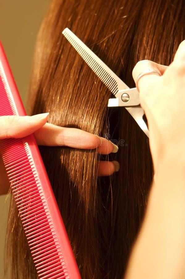 Coloração de cabelo fêmea em um salão de beleza imagem de stock