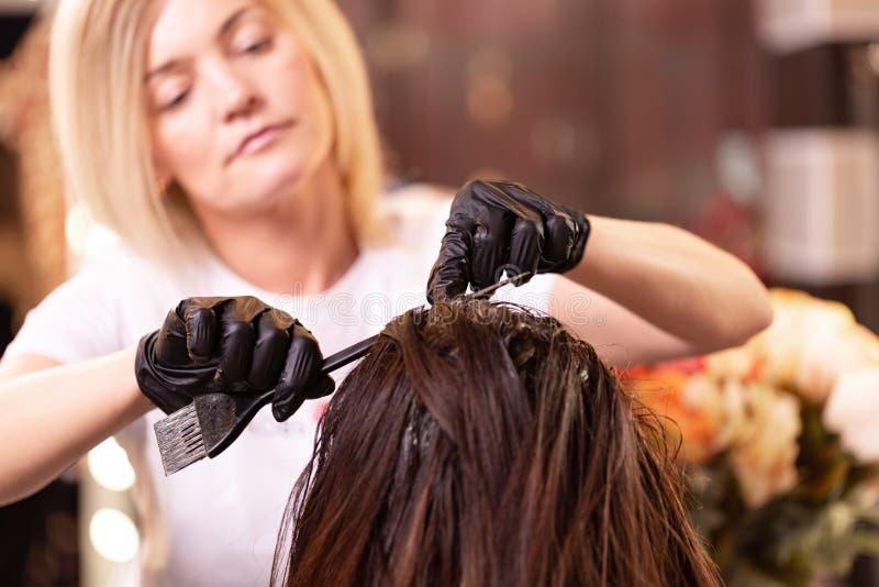 Colora??o de cabelo no sal?o de beleza, denomina??o do cabelo O feiticeiro profissional pinta o cabelo no sal?o de beleza Conceit imagem de stock royalty free