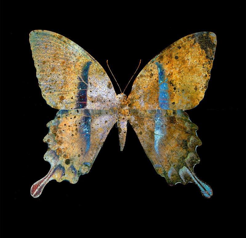 Colora a borboleta, a ilustração e meio misturado, fundo abstrato, efeito da oxidação do vintage ilustração royalty free