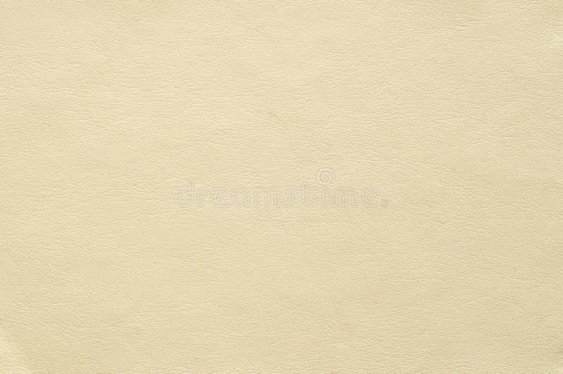 Colora o falso claro do marfim de couro com uma textura fina foto de stock royalty free