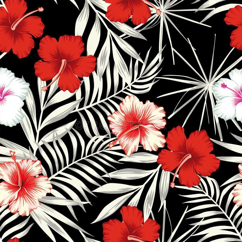 Colora o hibiscus no fundo sem emenda das folhas brancas pretas ilustração royalty free