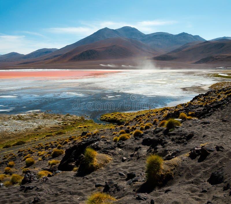 Colorada de Laguna avec des flamants dans la distance images libres de droits