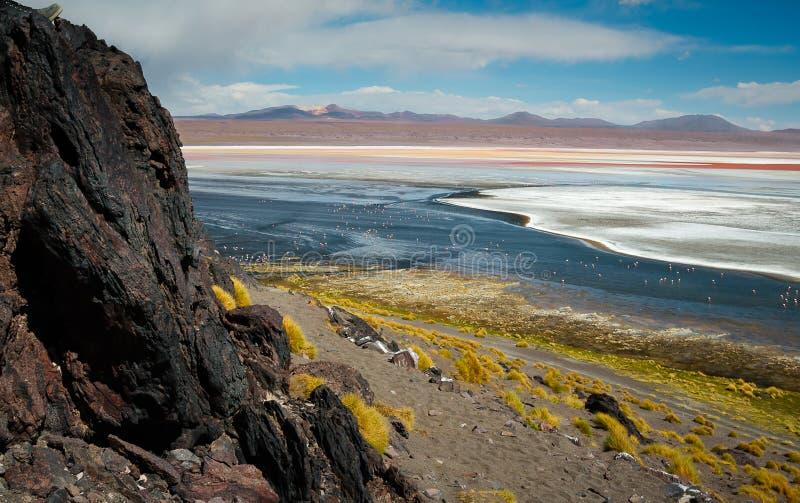 Colorada de Laguna com os flamingos na distância foto de stock