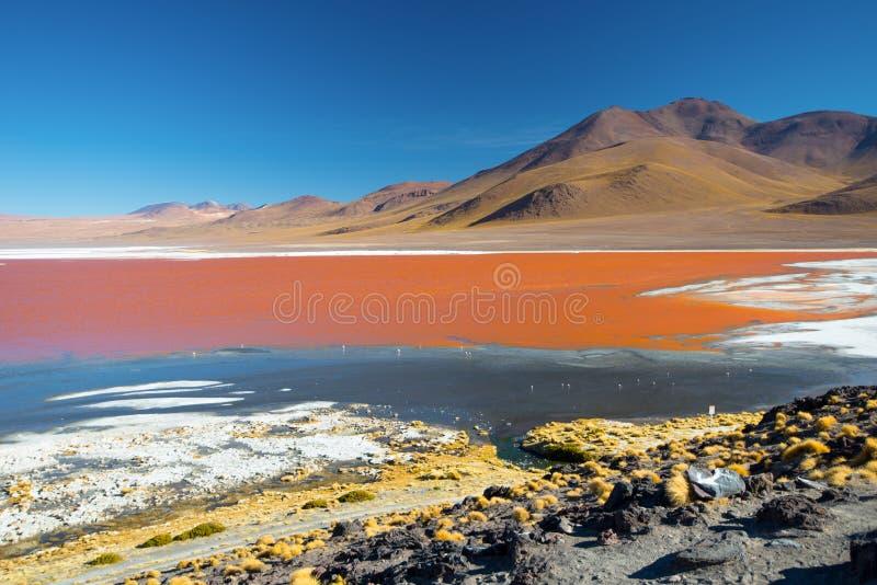 colorada laguna Berg av Bolivia, altiplano härligt dimensionellt diagram illustration södra tre för 3d Amerika mycket arkivfoton