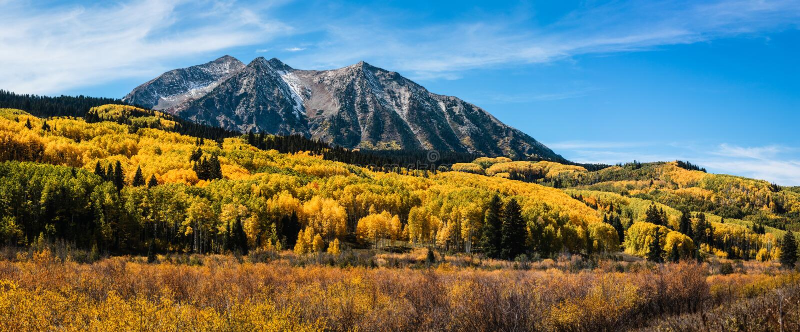 Colorado Autumn Color op Kebler-Pas royalty-vrije stock fotografie
