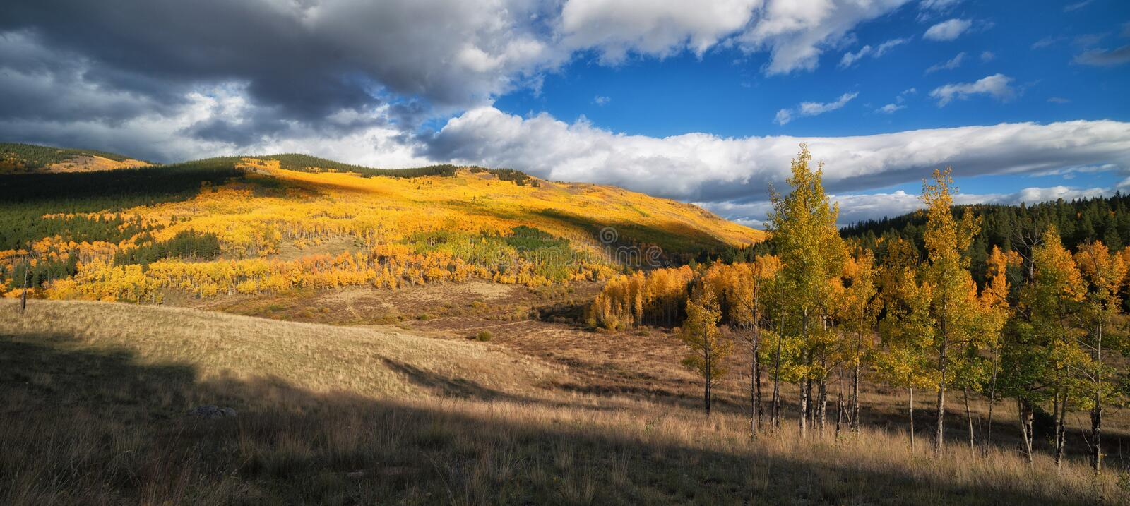 Colorado Autumn. A fall time picture showing the beautiful colors of autumn in Colorado stock images