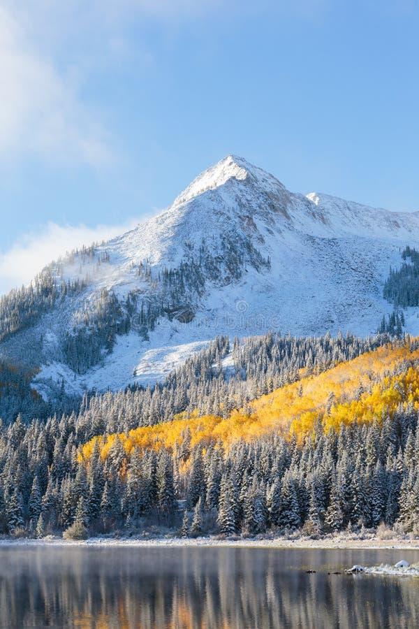 Colorado Autumn Scenery royaltyfri foto