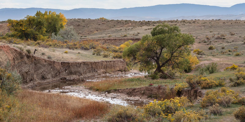 Colorado Autumn Scenery - Owl Canyon royaltyfri foto