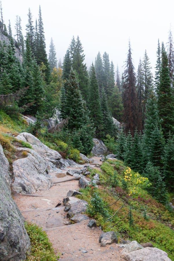 Colorado-Bergwandern-Spur lizenzfreie stockbilder