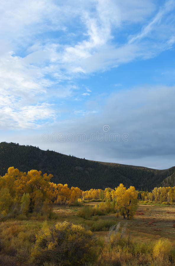 Download Colorado Fall-12 3357 stock image. Image of autumn, outside - 27194581
