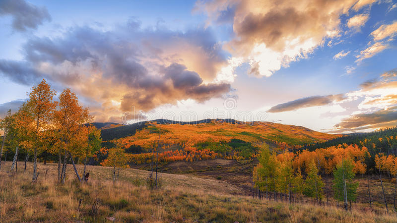 Colorado-Herbst lizenzfreies stockbild