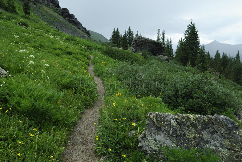 colorado hiking тропка гор утесистая стоковые фото