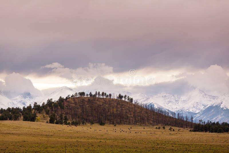 Colorado jesieni zdjęcia royalty free