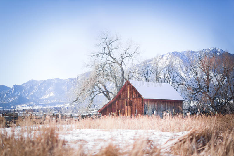 Colorado ladugård i snön arkivfoton