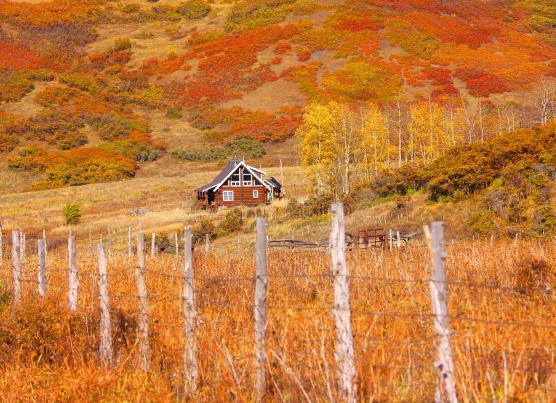 Colorado lantligt landskap arkivfoto