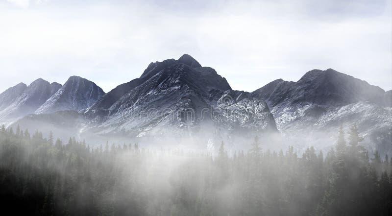 Colorado Misty Mountain arkivbild