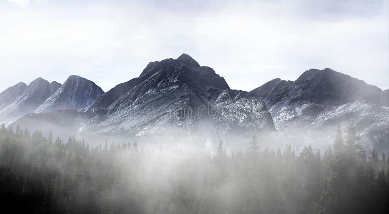 Colorado Misty Mountain fotografia de stock