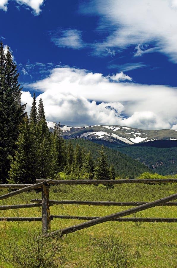 Free Colorado Mountain Pasture Royalty Free Stock Images - 2121939