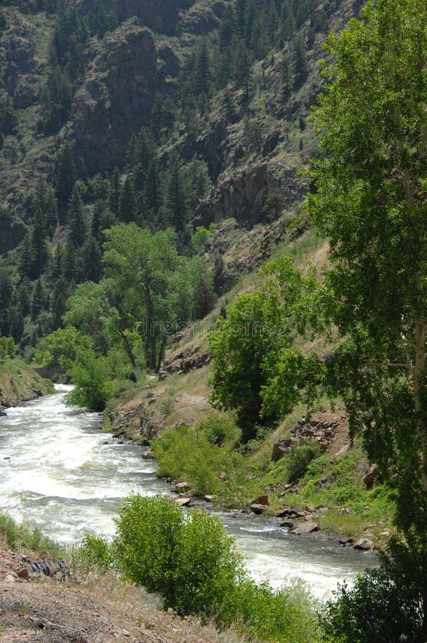 Download Colorado Mountain Stream 1 Stock Photos - Image: 5603843