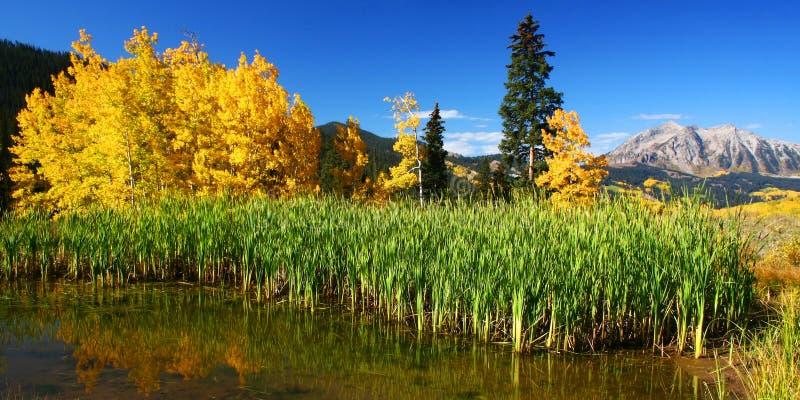 Download Colorado Mountain Vista stock photo. Image of united, panoramic - 8983998