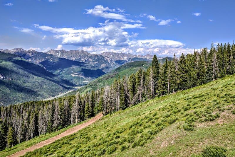 Colorado mountains royalty free stock photo