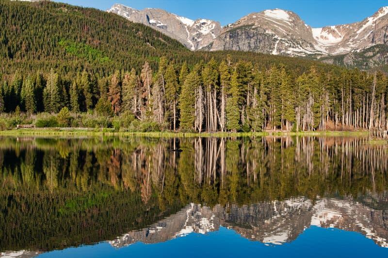 Colorado reflexioner i Rocky Mountain National Park fotografering för bildbyråer
