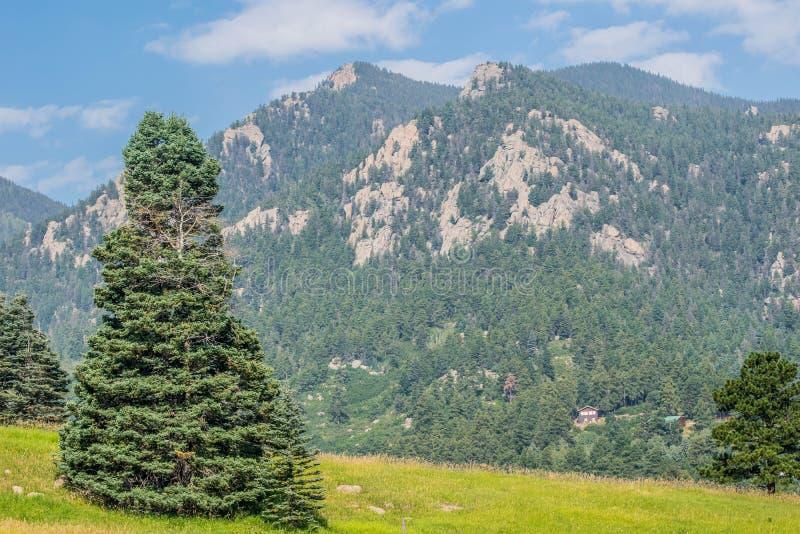 Download Colorado Rockies imagen de archivo. Imagen de verano - 100533281