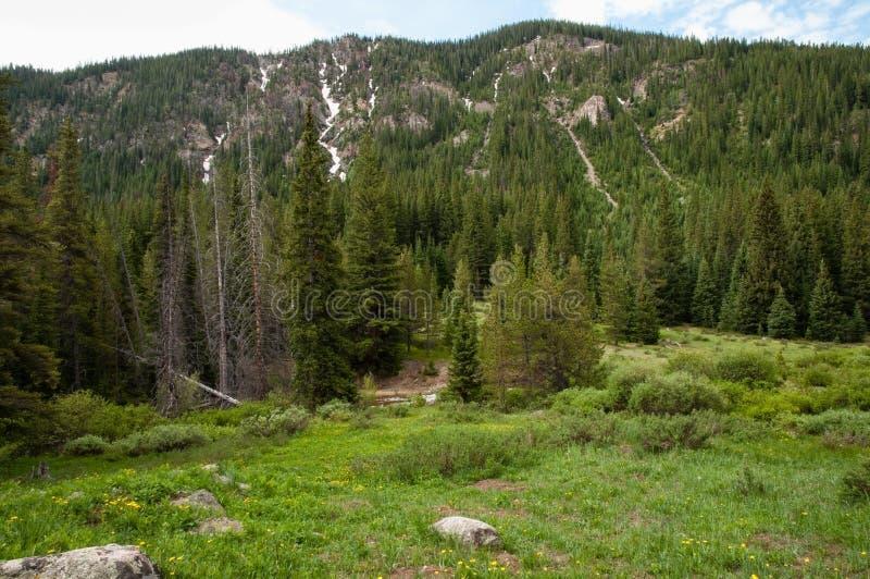 Colorado Rockies zdjęcia royalty free