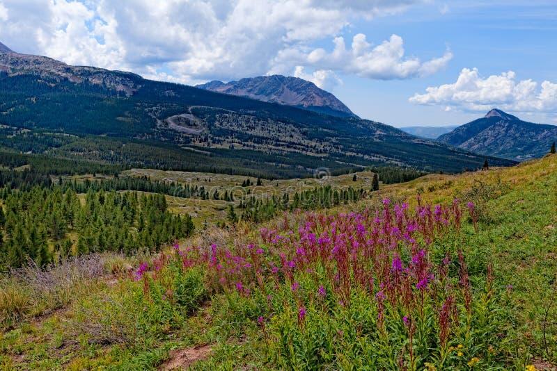 Colorado Rockies en el rastro de Colorado cerca del pequeño lago Molas fotografía de archivo libre de regalías