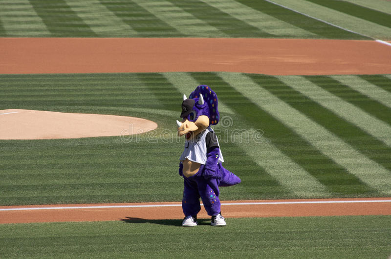 Colorado Rockies Mascot. Dinger, the Colorado Rockies purple dinosaur mascot, on the field at Coors Field in Denver stock photos