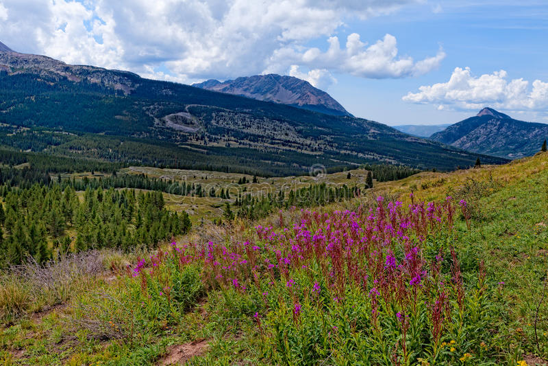 Colorado Rockies på den Colorado slingan nära den lilla Molas sjön royaltyfri fotografi