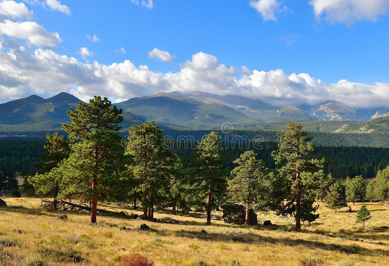 Colorado, Rocky Mountain National Park: Foothills of Longs Peak. A summer morning vista of one of the most prominent mountains in Colorado 14259 ft/4346m, Longs royalty free stock photo
