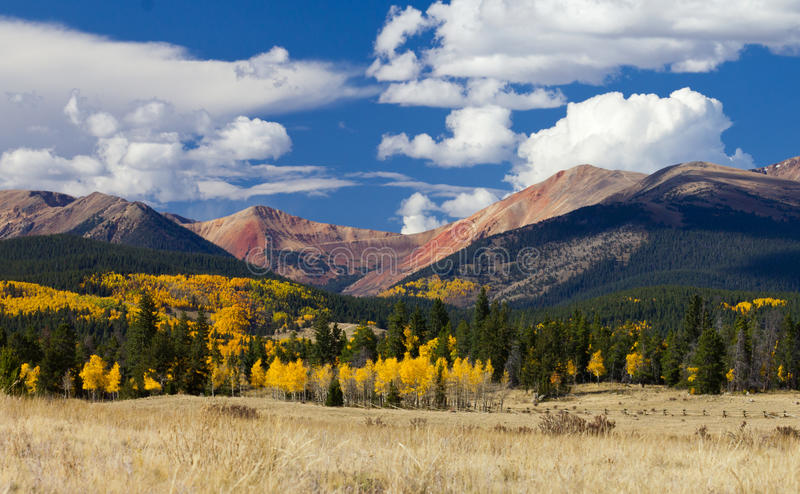 Colorado Rocky Mountains in Fall. Fall aspen forest in the Colorado Rocky Mountains royalty free stock photo