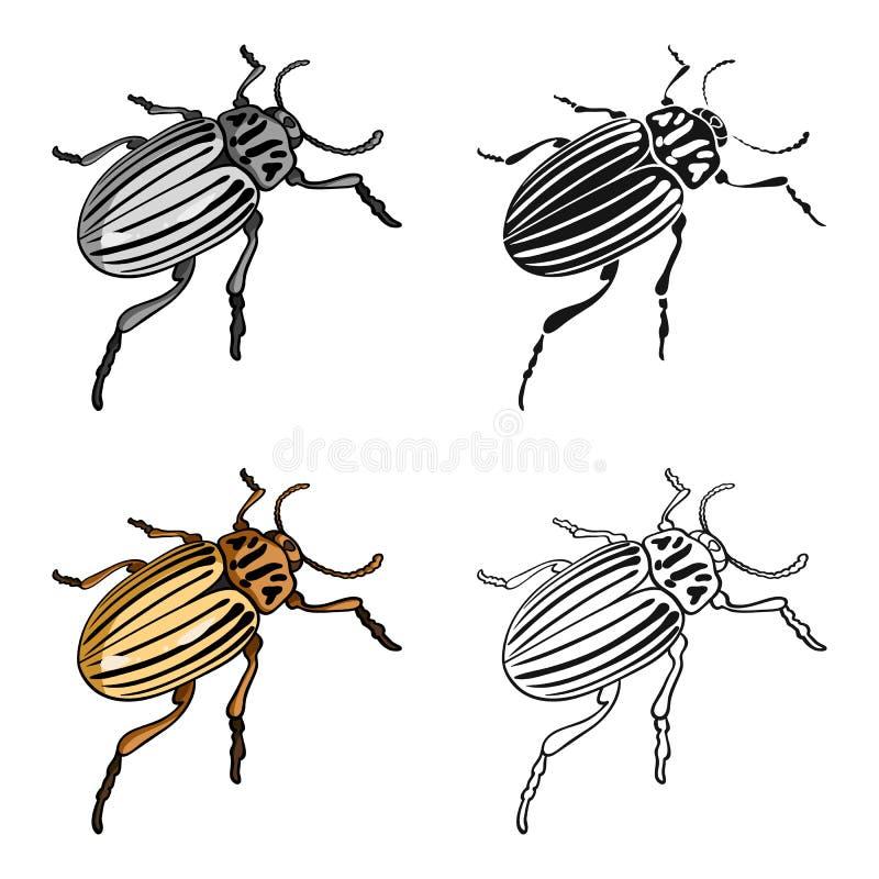 Colorado skalbagge, ett coleopterous kryp Colorado en enkel symbol för skadligt kryp i materiel för symbol för tecknad filmstilve vektor illustrationer