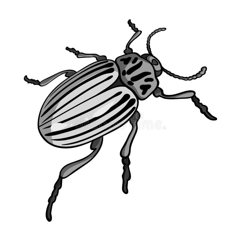 Colorado skalbagge, ett coleopterous kryp Colorado en enkel symbol för skadligt kryp i monokromt materiel för stilvektorsymbol royaltyfri illustrationer