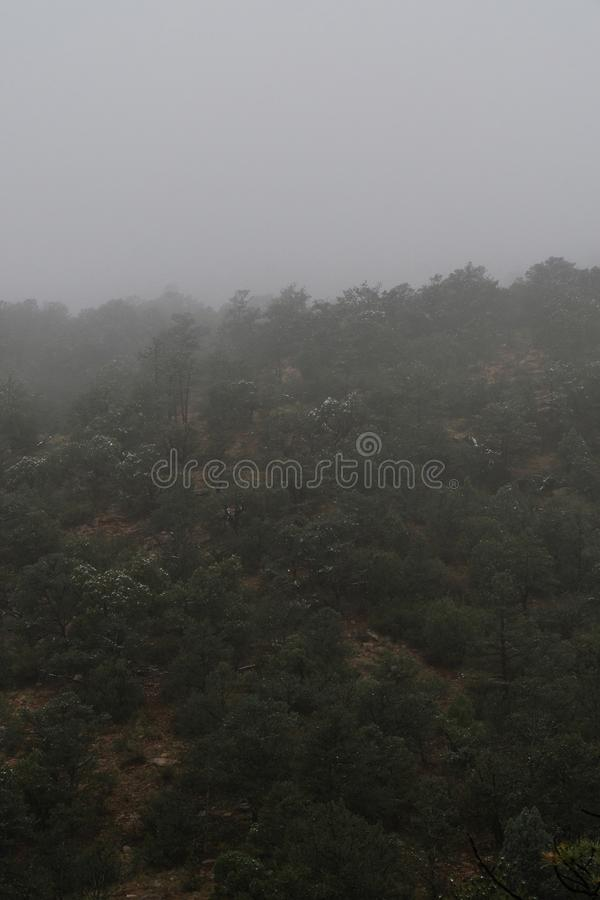 Colorado springs garden of the gods rocky mountains adventure travel photography. Foggy day morning fog in the garden of the gods in colorado springs - travel stock images
