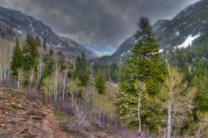 Download Colorado- Vail-Eagle Mountain Wilderness Stock Photo - Image: 20084242