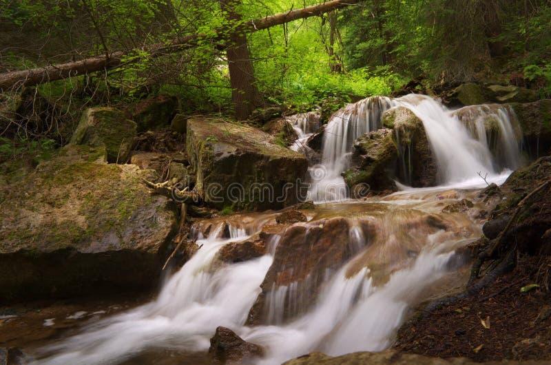 Colorado vattenfall och träd arkivbild