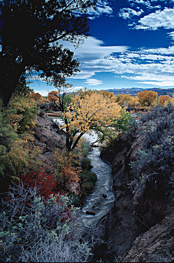 Download Coloradofloden arkivfoto. Bild av natur, färg, färger, trees - 26564