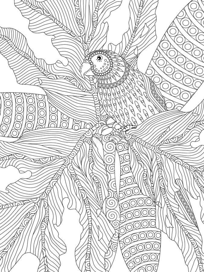 Colorante adulto dibujado mano del loro stock de ilustración