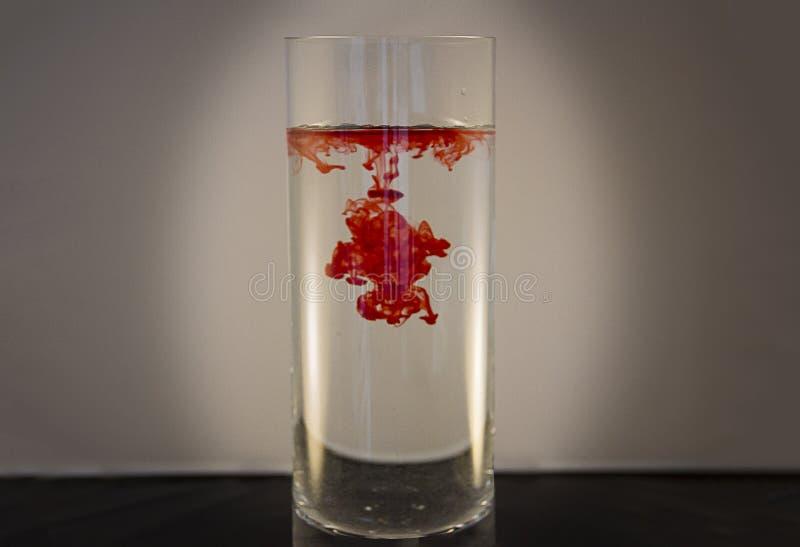 Colorante alimentario rojo en agua en un florero fotografía de archivo libre de regalías