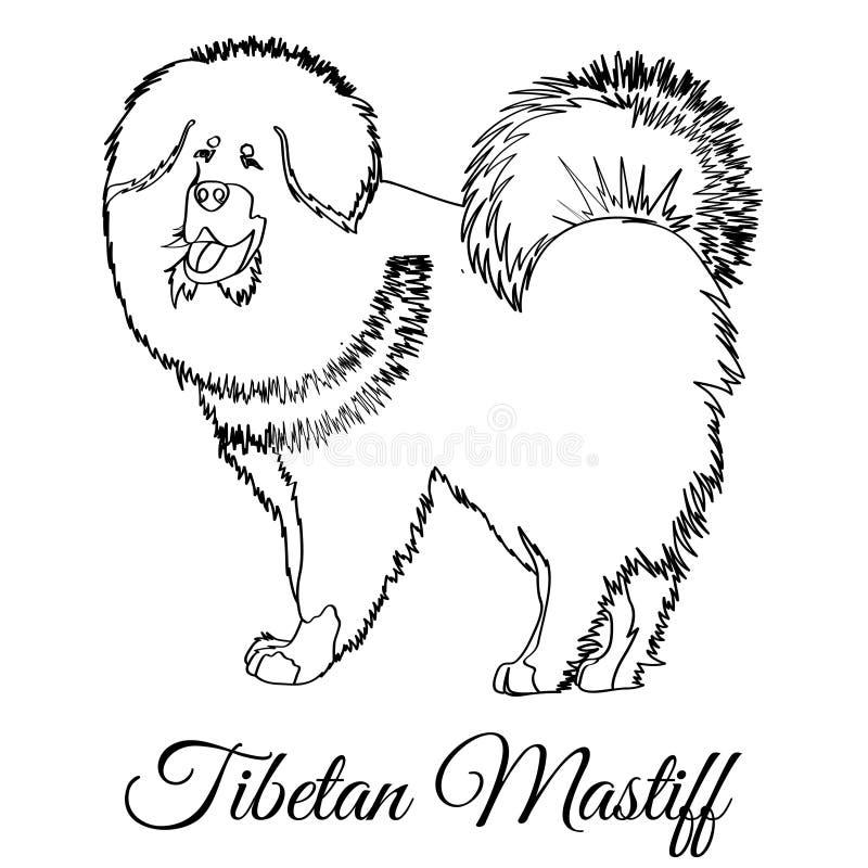 Coloration de chien de mastiff tibétain illustration stock