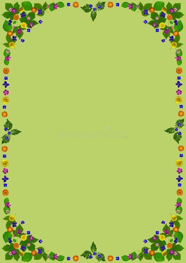 ColorBlossomsFrameDinGreen ελεύθερη απεικόνιση δικαιώματος