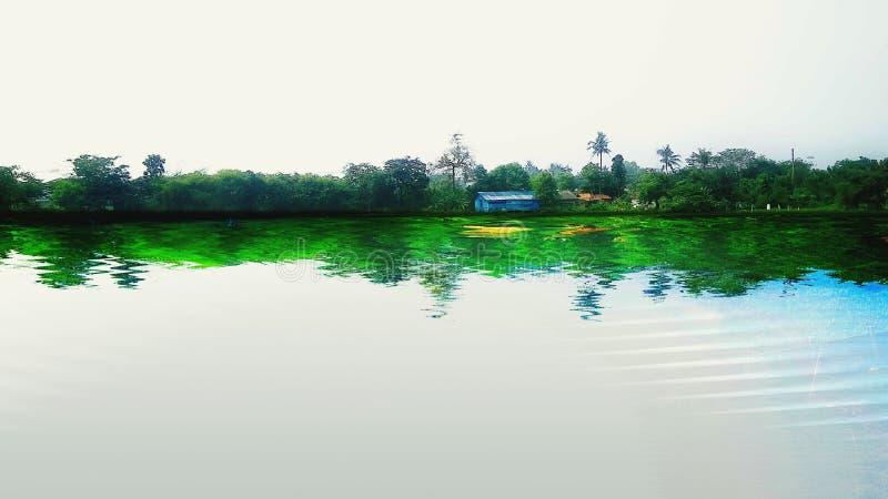 Colore della casa di verde della radura dell'acqua del lago immagine stock