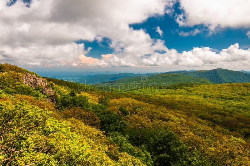 Colore della primavera in Ridge Mountains blu, nel parco nazionale di Shenandoah, la Virginia. fotografie stock