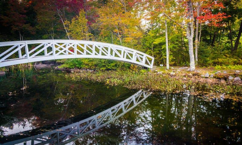 Colore di autunno e ponte di camminata sopra uno stagno in Somesville, Maine fotografie stock