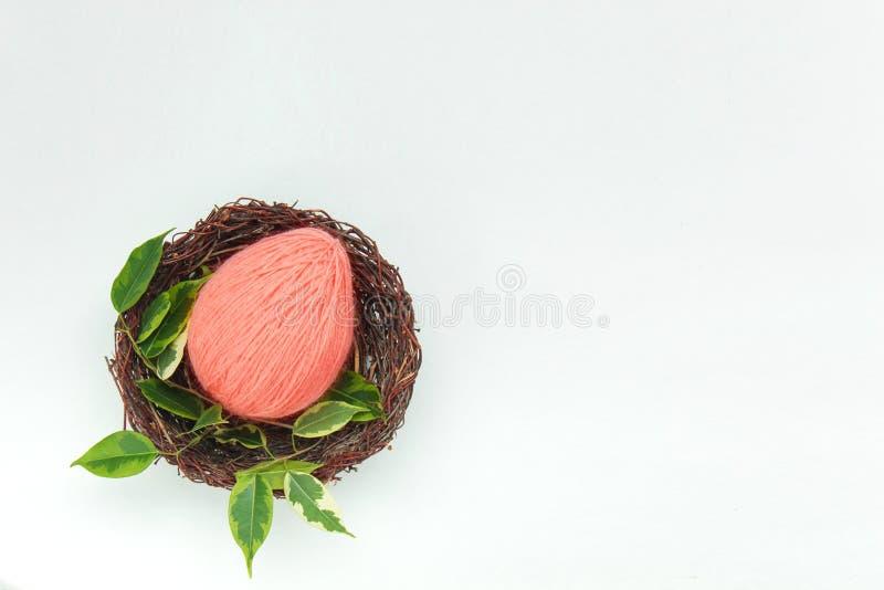 Colore di concetto di tendenza del corallo vivente di anno 2019 fotografia stock