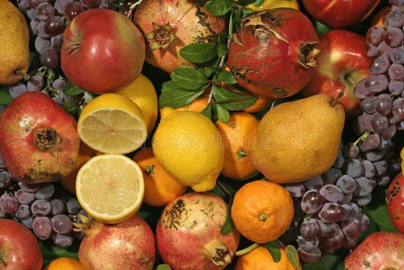 Colore di frutta fotografie stock libere da diritti