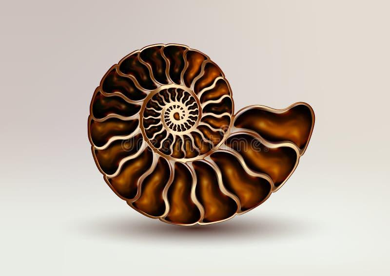Colore fossile della madreperla dell'ammonite dell'immagine realistica di vettore su fondo leggero madreperlaceo, dorato, puro ed royalty illustrazione gratis