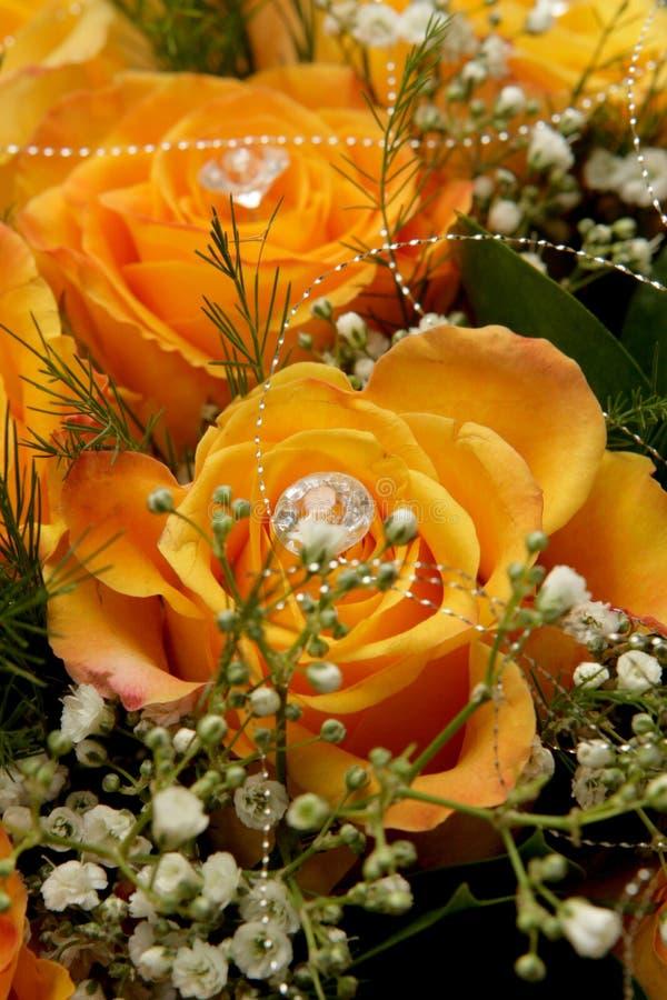 Colore giallo della Rosa immagini stock